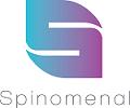 Spinomenal at World Gaming Executive Summit 2017