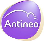 >Antineo