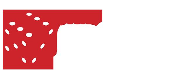 WGES 2020