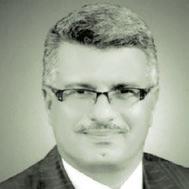 Mohamed Selim                  at The Solar Show MENA 2019