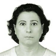 Eng. Suhaila Marafi                  at The Solar Show MENA 2019