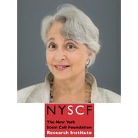 Susan Solomon, CEO and Founder, The New York Stem Cell Foundation Research Institute
