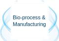 Bioprocess & Manufacture