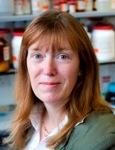 Sarah Gilbert | Professor of Vaccinology | University of Oxford » speaking at Vaccine Europe