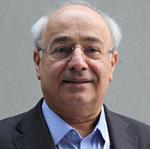 Prof Farzin Farzaneh