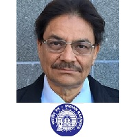 Nalinaksh Vyas, Chairman, Technology Mission, Indian Railways