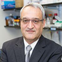Javad Aman at World Anti-Microbial Resistance Congress 2018