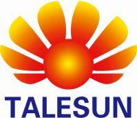 Talesun Technologies Co., Ltd at The Solar Show Africa 2019
