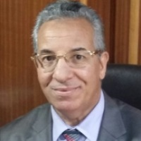Mohamed Mahmoud Soliman