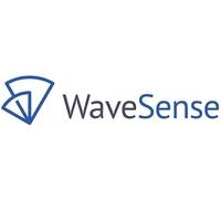 WaveSense at MOVE 2019