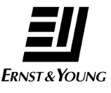 Ernst & Young -Terrapinn Trianing Alumni